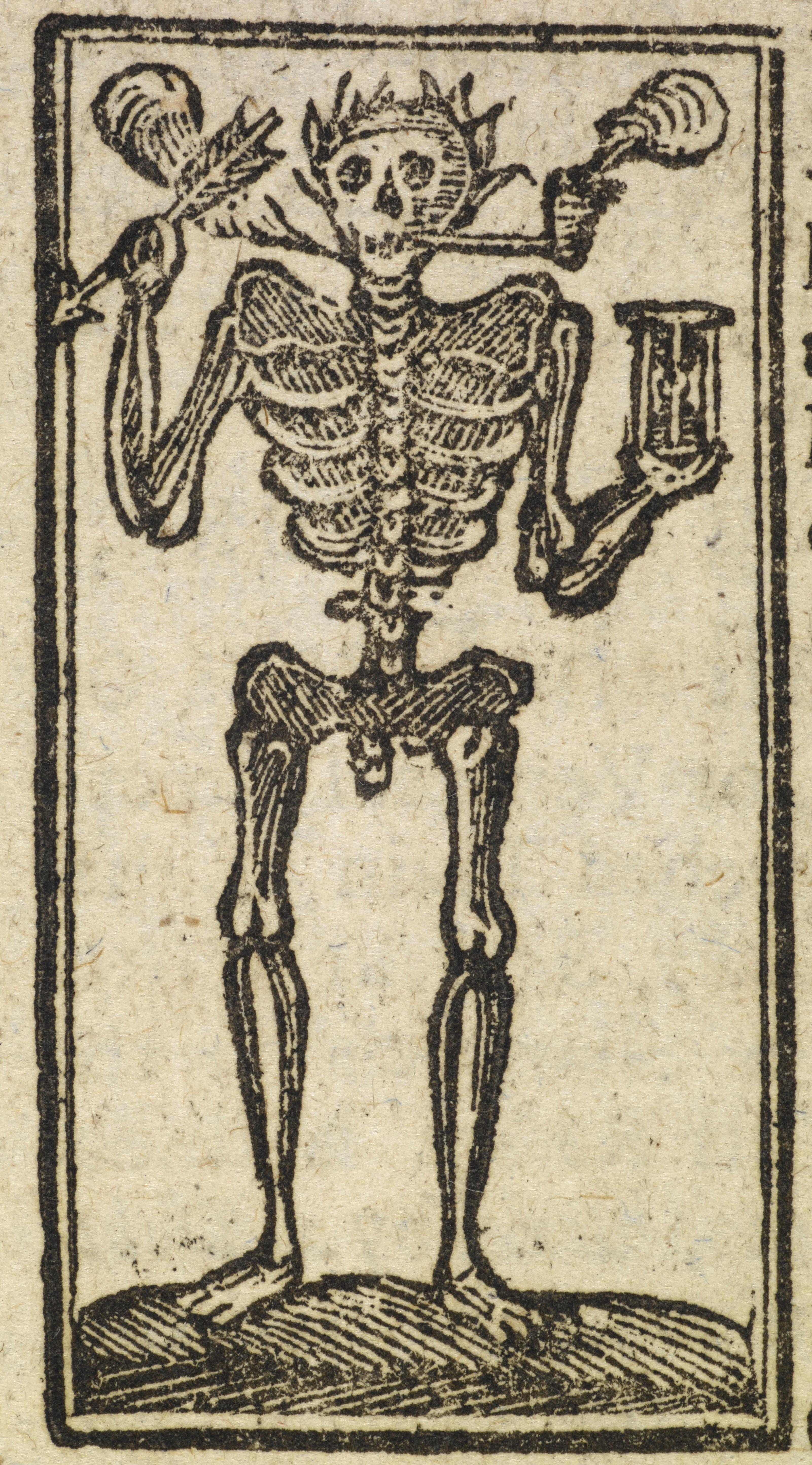 skeletons – Anita Guerrini